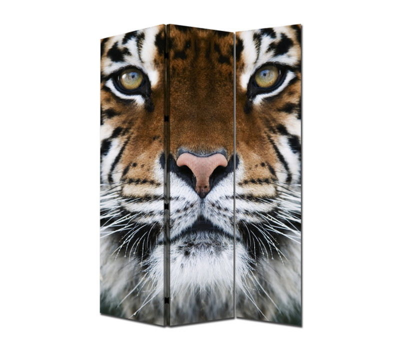 Room Divider Privacy Screen 3 Panels W120xH180cm Tiger