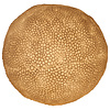 Fine Asianliving Fine Asianliving Sandstone Coral Ball Lamp 31.5x28.5cm