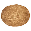 Fine Asianliving Sandstone Flat Coral Ball Lamp 34x23.5cm
