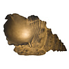 Fine Asianliving Tischlampe aus Sandstein Muschel 39.5x21.5x23.8cm