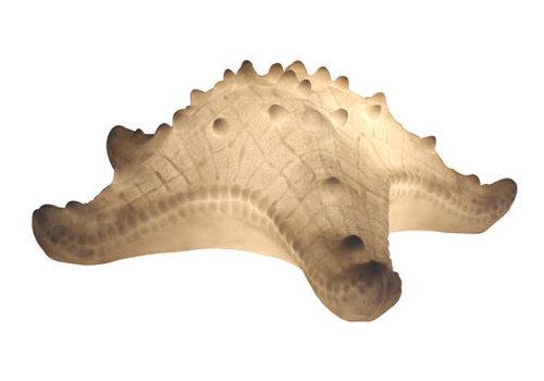 Fine Asianliving Lampada da Tavolo in Arenaria Stella Marina 42x40.2x14.5cm