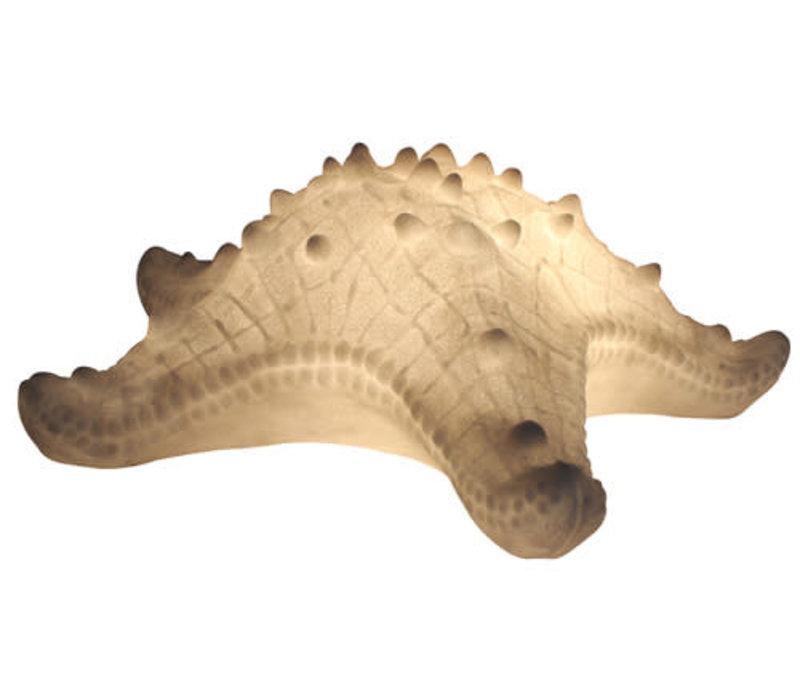 Fine Asianliving Sfeerlamp Nachtlamp Sea Star Sandstone Handgemaakt 42x40.2x14.5cm