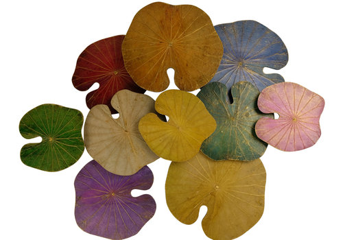 Fine Asianliving Lotus Leaf Painting Sustainable Wall Art 3D Multicolour