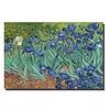 Fine Asianliving Wall Art Canvas Print 120x80cm Iris Garden van Gogh Hand Embellished Giclee Handmade