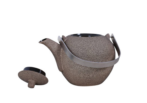 Fine Asianliving Oriental Tea Pot Cast Iron Handmade in Vietnam