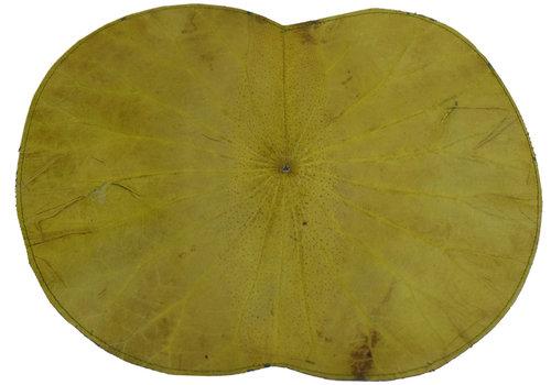 Fine Asianliving Placemat 100% Echte Lotus