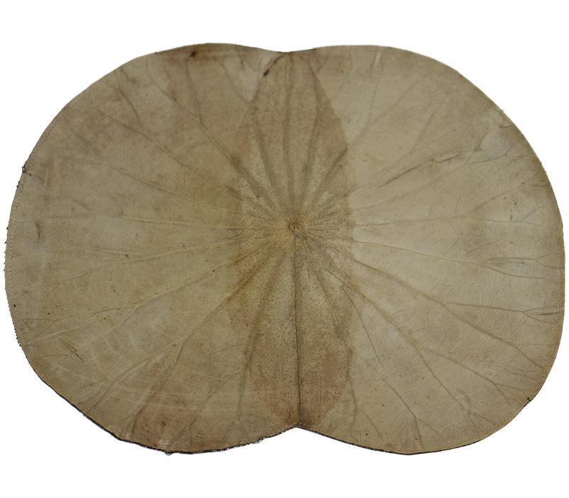 Placemat 100% Real Lotus