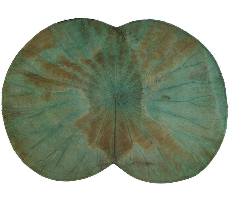 Placemat Real Lotus Leaf