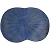 Fine Asianliving Placemat Real Lotus Leaf