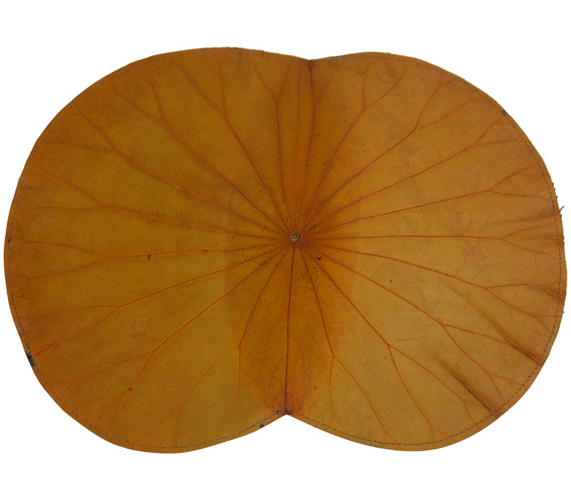 Placemat Real Lotus Leaf