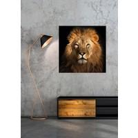 De Leeuwen Koning Digitale Print 95x95cm Acryl Glas