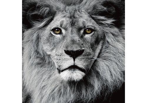 Fine Asianliving Tableau sur Toile sur Verre de Sécurité Imprimé Le Roi Lion Noir et Blanc L80xH80cm