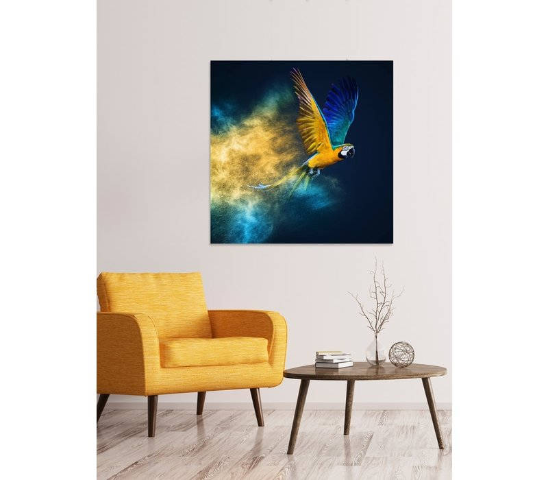 Flying Parrot Digitalprint 95x95cm Acrylic Glass