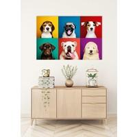 Grappige Honden Digitale Print 80x120cm Acryl Glas