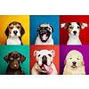 Fine Asianliving Grappige Honden Digitale Print 80x120cm Acryl Glas