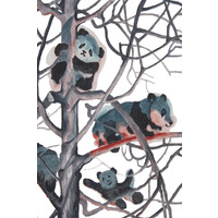 Olieverf Schilderij 100% Handgeschilderd Chinese Panda's in Bomen 70x120cm