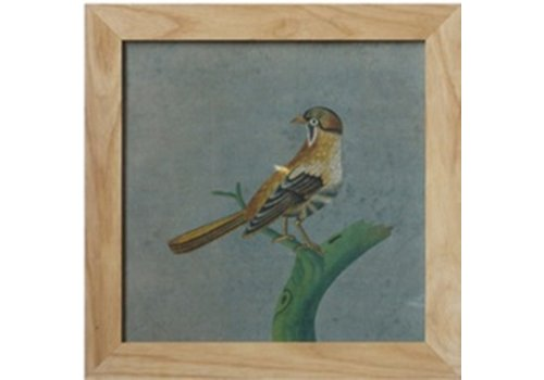 Fine Asianliving Chinese Painting with Frame Bird On Branch W42xH42cm