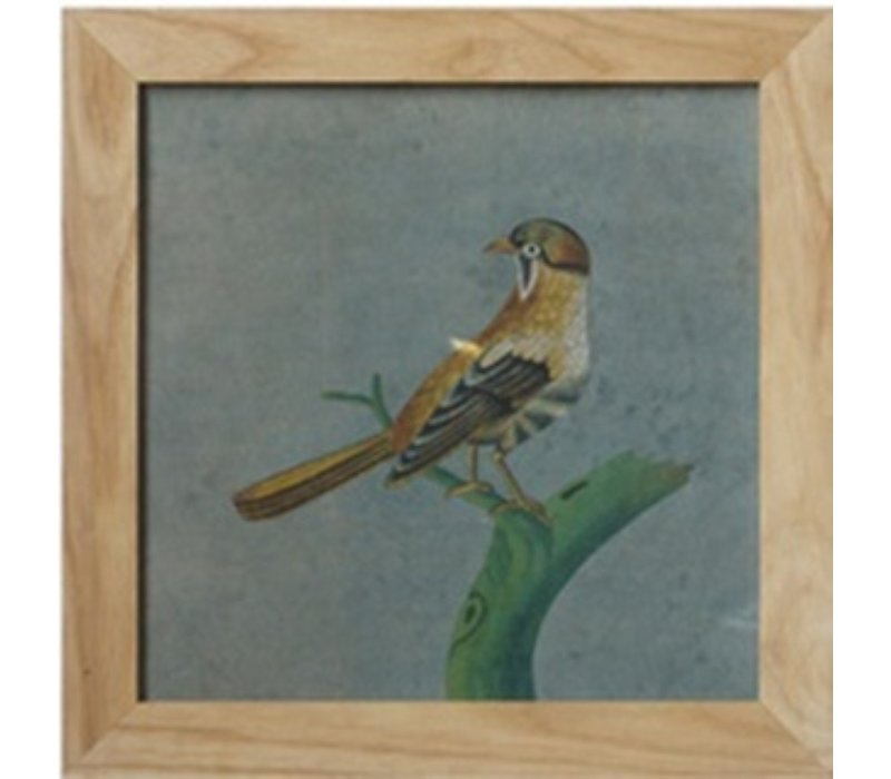 Chinese Painting with Frame Bird On Branch W42xH42cm