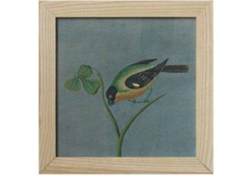 Fine Asianliving Chinees Schilderij met Lijst Vogel op Takje B42xH42cm