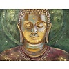Fine Asianliving Painting Buddha Handpainted