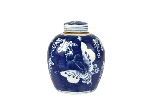 Fine Asianliving Chinese Ginger Jar Blue White Porcelain Butterflies D14xH17cm