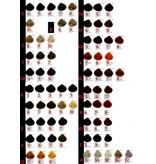 KIS Color Complete Set