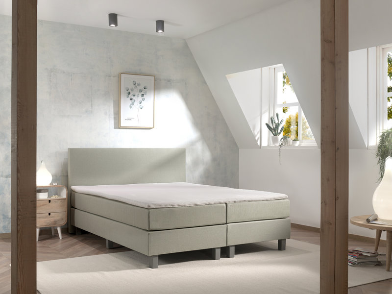 Boxspring Sydney Limited Colour Edition - Olive