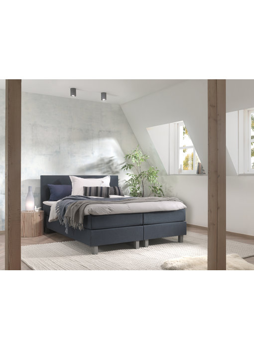 Boxspring Sydney Limited Colour Edition - Royal
