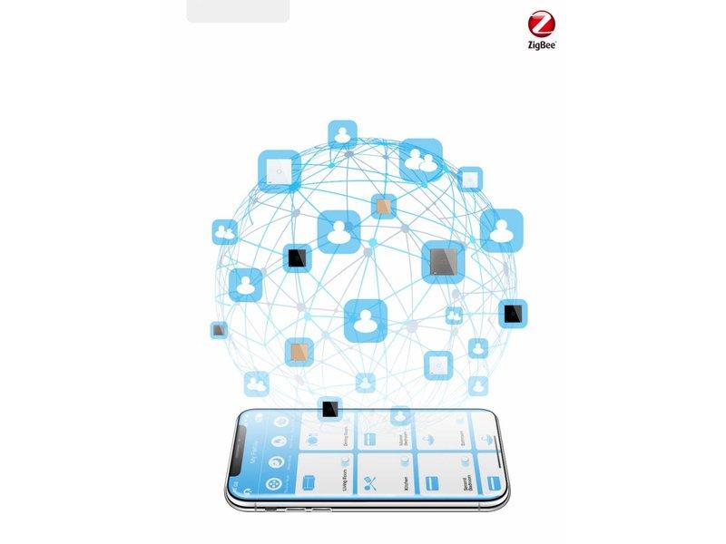 Design Touch Switch Module   2 Gang 1 Way   1 Hole  Zigbee   Smart Home