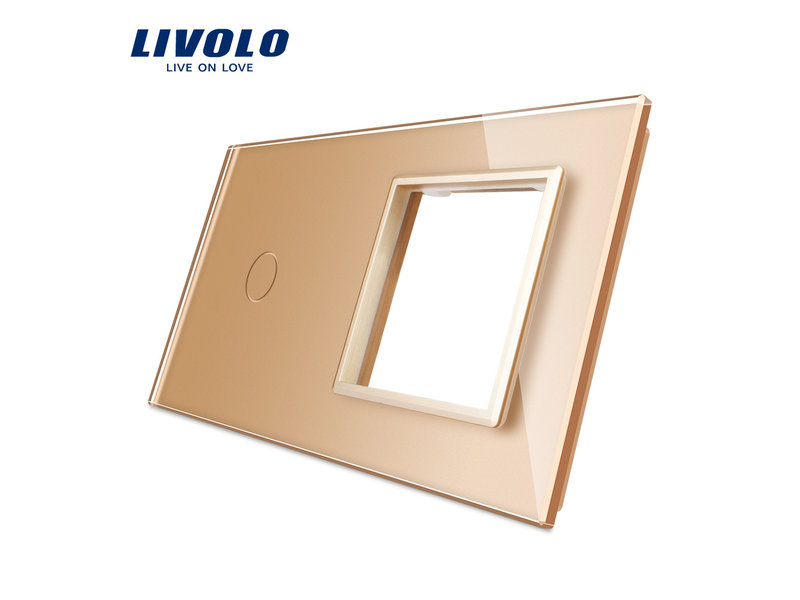 Livolo Design Glass Panel | 1-Gang + Module/Socket | 2 Hole