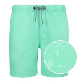 Shiwi 4292112131 Swimshort