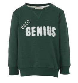 Name-it Niels Sweater