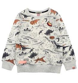 Sturdy 716.00416 sweater aop