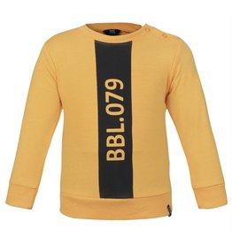 Beebielove 2623 Sweater