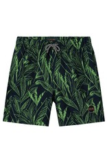 Shiwi 4212110077 Swimshort
