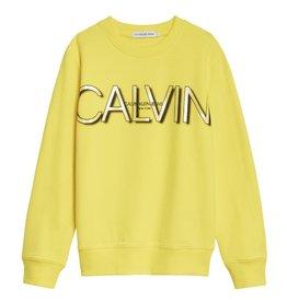 Calvin Klein 01006 Sweater