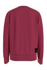 Calvin Klein 0162 Logo Sweatshirt