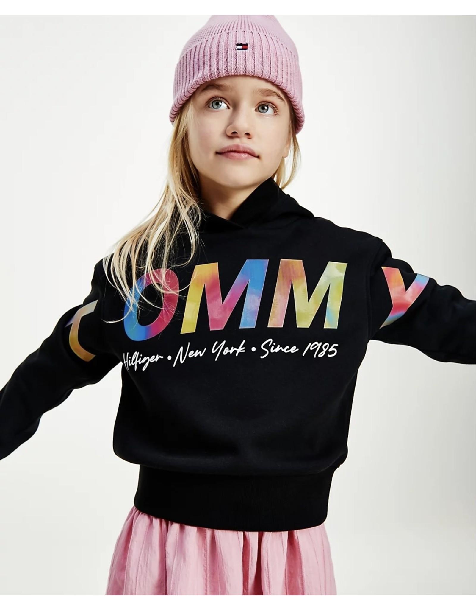 Tommy Hilfiger 6160 Sweater