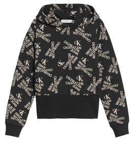Calvin Klein 1109 Sweater