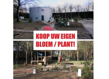 Koop uw eigen plant/bloem!! (Jessie & Dylan)
