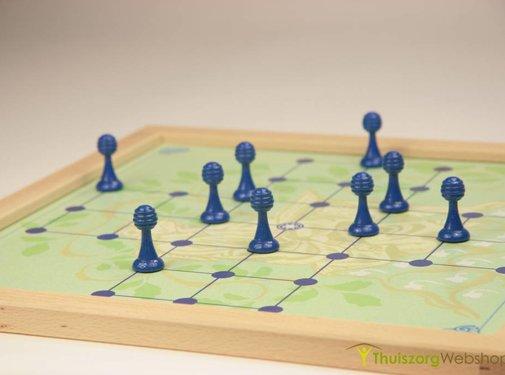 Solitaire spel eenpersoonsspel- magnetisch