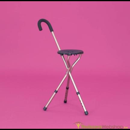 Wandelstokstoel