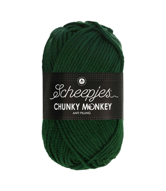 Scheepjes Chunky Monkey 100g - 1009 - Pine