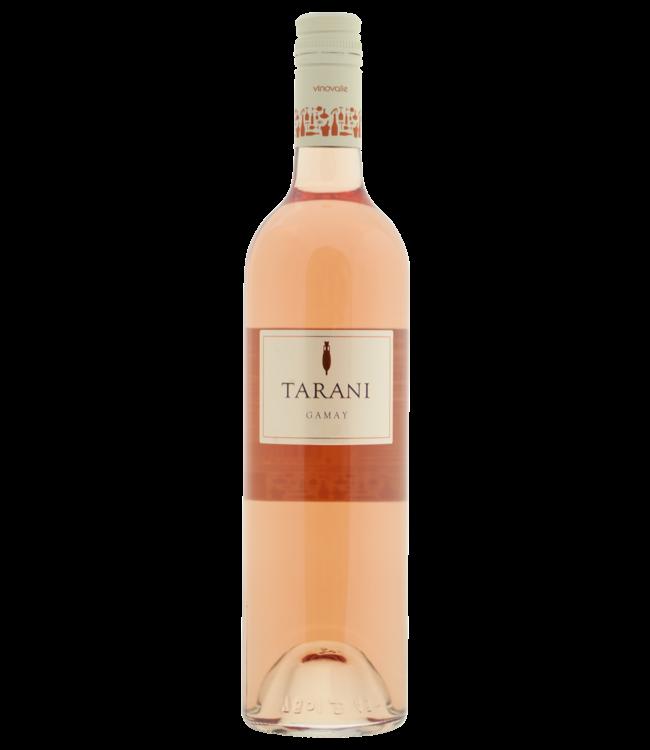 Tarani Gamay rose