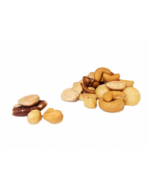 Macadamia mix gezouten