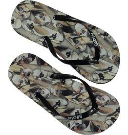 Molo Molo Flip-Flops Zeppo Skateboard Camouflage
