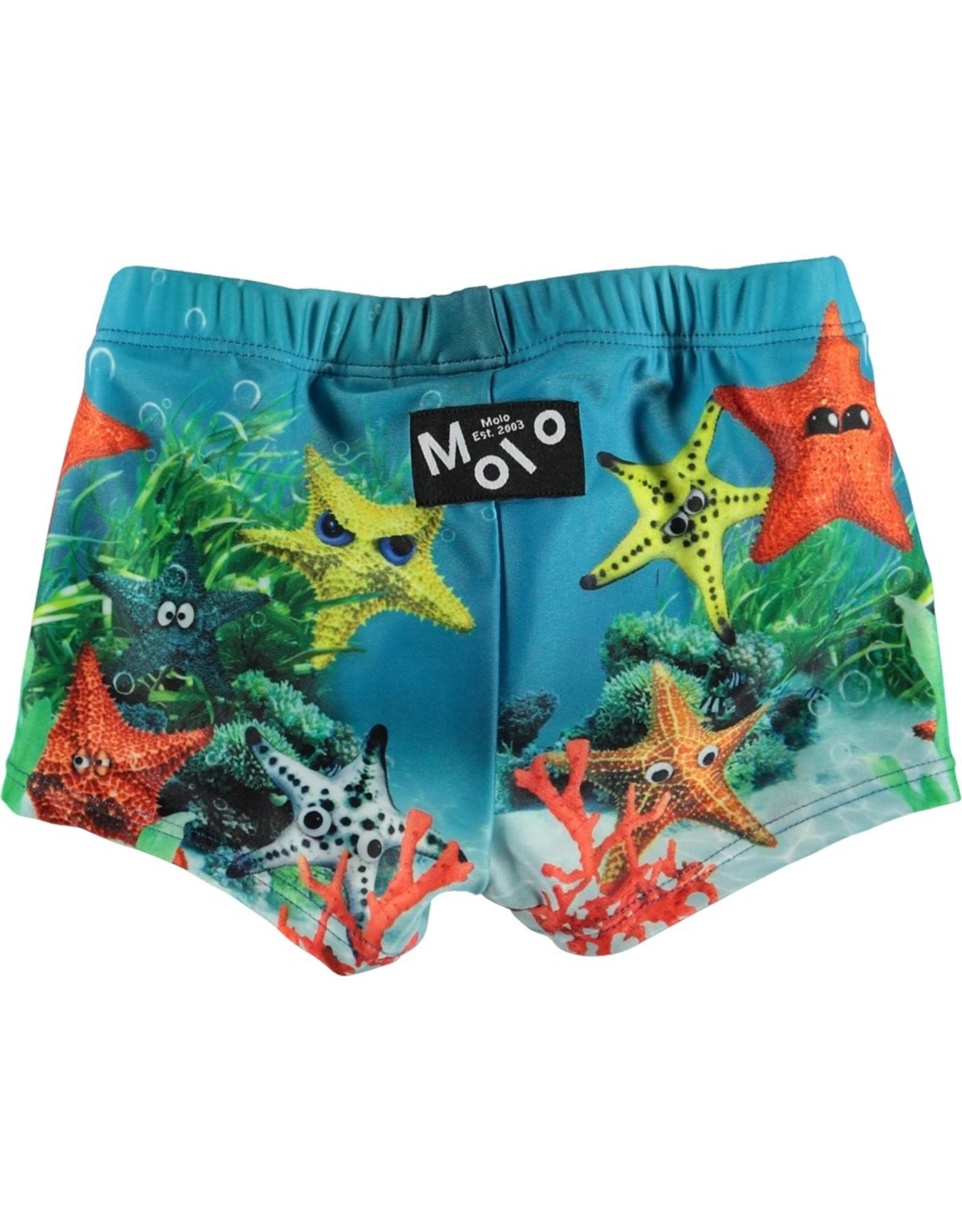 Molo Molo Nansen Moody Stars
