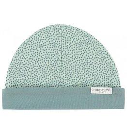 Noppies Noppies Hat reversible Babylon Grey mint