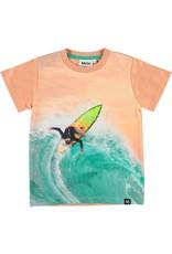 Molo Molo Raymont Surf Away