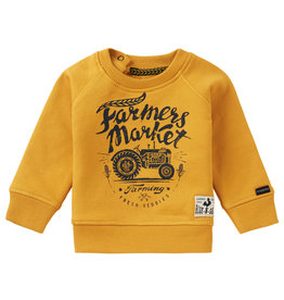 Noppies Noppies B Sweater LS Kei Road Chinese Yellow
